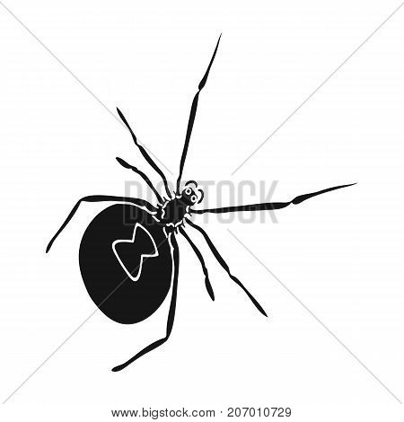 An arthropod bug is an insect.A spider, a predatory insect single icon in black style vector symbol stock isometric illustration .