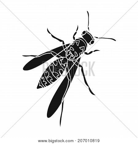 Wasp, hymenopteran insect.Wasp, stinging insect single icon in black style vector symbol stock isometric illustration .