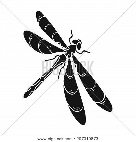 A dragonfly, a predatory insect.Dragonfly flying invertebrate insect single icon in black style vector symbol stock isometric illustration .