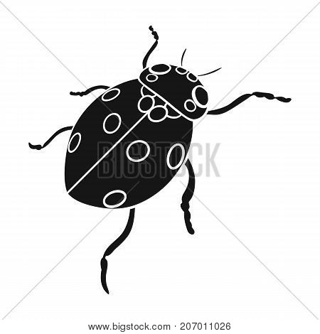 Ladybug is an arthropod.The insect beetle, ladybug single icon in black style vector symbol stock isometric illustration .