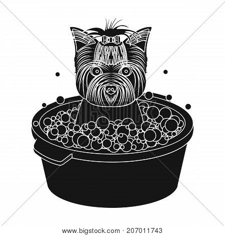 Bathing pet puppy in a bowl. dog, Pet, dog care single icon in black style vector symbol stock illustration .