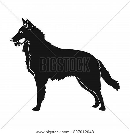 A pet, a dog with a ball in his teeth, a German shepherd. Pet, dog care single icon in black style vector symbol stock illustration .