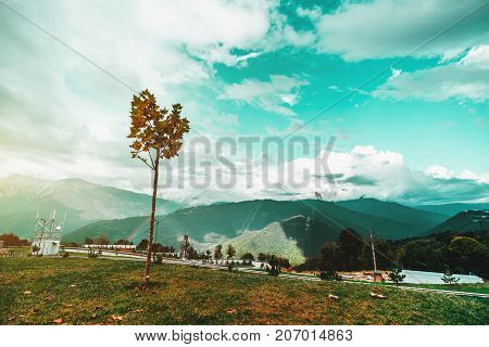 Autumn wide-angle scenery: single young partly dry maple tree in foregroundon a glade and bright teal sky with cloudscape rainbow and mountain ridge in foreground; copy space for logo or your text