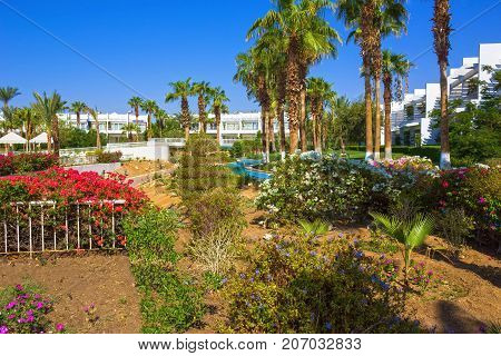 Sharm El Sheikh, Egypt - September 26, 2017: Buildings and Area Hotel Monter Carlo Sharm Resort and SPA at Sharm El Sheikh, Egypt on September 26, 2017