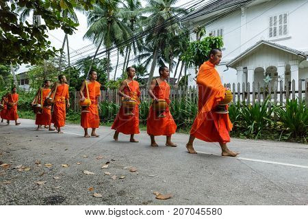 Buddhist Monks Collecting Alms In Luang Prabang, Laos