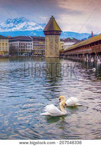 Chapel Bridge, Lucern