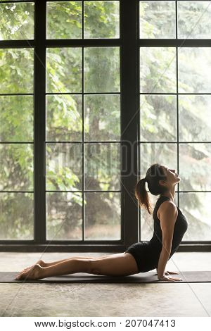 Young sporty woman practicing yoga, stretching in upward facing dog exercise, Urdhva mukha shvanasana pose, working out wearing sportswear black shorts, top, indoor full length, copy space background
