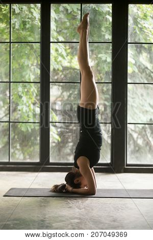 Young attractive woman practicing yoga, standing in salamba sirsasana exercise, headstand pose, working out, wearing sportswear, black shorts and top, indoor full length, window background