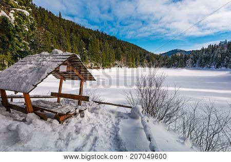 wooden bower in snowy winter spruce forest. beautiful mountainous landscape near snow covered frozen lake Synevyr