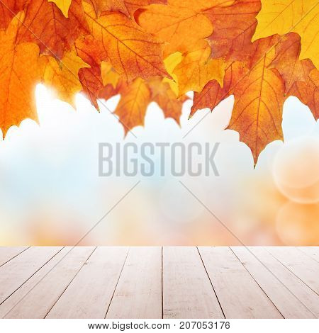 Autumn Background with Empty Wooden Table and Fall Leaves for a Catering or Food Board. Country Outdoor Template Mock up for Display of Product