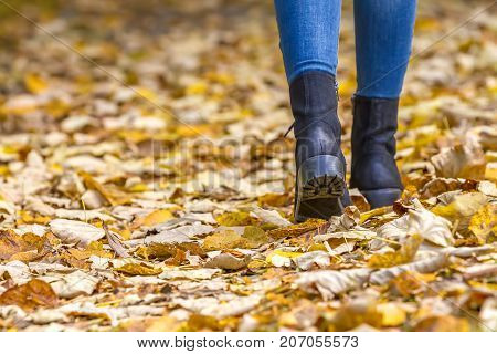 Woman feet wearing boots walking on fall leaves outdoor with autumn season.