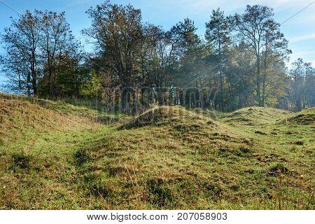 Landscape With Autumn Forest Upon Green Grassland Hills