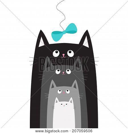 Black gray cat head looking at blue bow hanging on thread. Cats in a row. Different size. Cute cartoon character family set. Pet baby collection Card. Flat design. White background Vector illustration