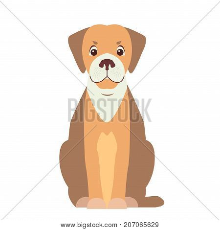Happy cute hunting dog sitting with smiling muzzle flat vector isolated on white background. Lovely purebred pet illustration for animal friends and companions concepts, pet shop ad