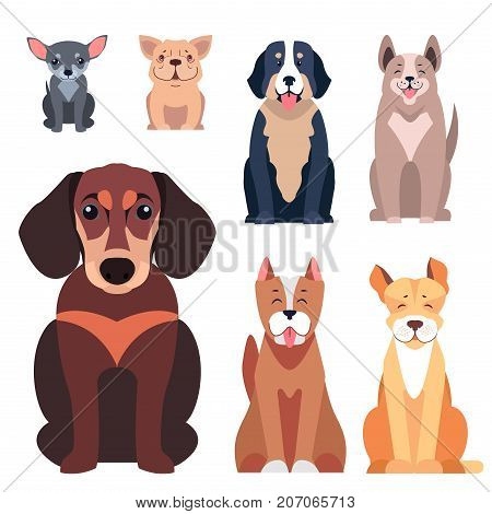 Cute cartoon doggies sitting with smiling muzzle and hanging out tongue flat vector isolated on white. Lovely purebred pets illustration for vet clinic, breed club or shop ad