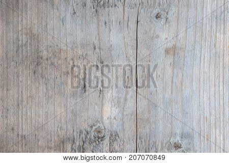Wooden tree plank textured for background usage.