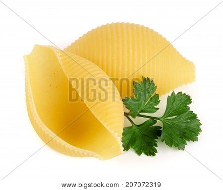 Italian lumaconi with leaf parsley isolated on white background. Lumache, snailshell shaped pasta.