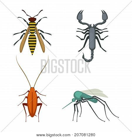 Collection of icons of colorful bugs consisting of wasp and scorpion, cockroach and mosquito, on vector illustration isolated on white