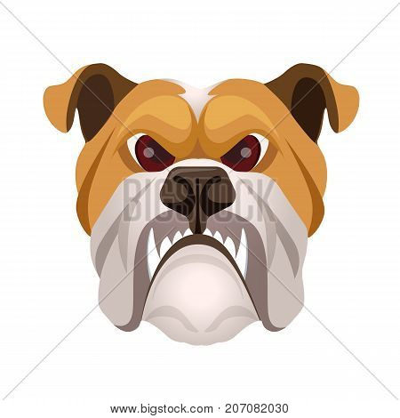 Angry bulldog face colored in beige and white vector realistic illustration. Head of grown up canin medium-sized breed with wrinkled face and evil tooth smile