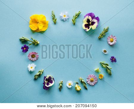Spring flowers circle round frame, flat lay details on green background. Minimalistic design nature concept