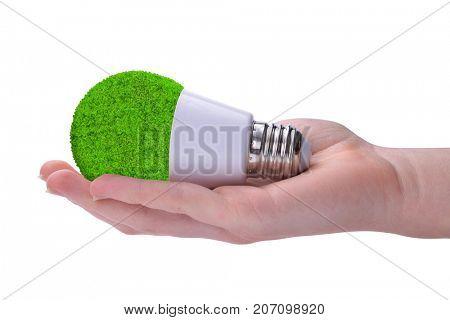 Hand holding eco LED bulb isolated on white background. Energy saving lamp.