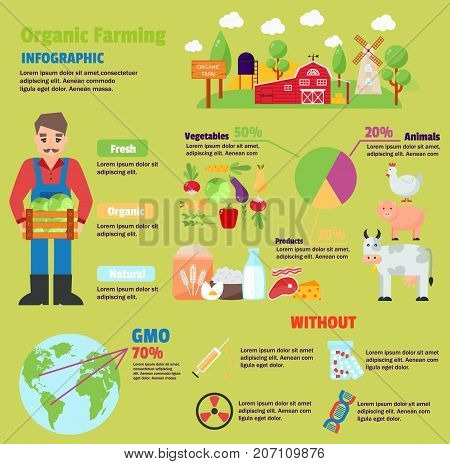 Infographic health care heart organic farm infographic template design. Organic farm route to healthy concept vector illustration. Organic farm graphic web gardening design vegetarian agricultural