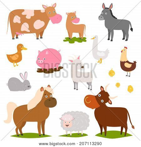 Farm animals cartoon characters family rural organic harvest farming domestic agriculture thoroughbred vector illustration. Mascot funny collection.