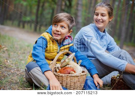 Mushrooms picking, season for mushrooms - lovely girl and boy with picked fresh edible mushrooms in basket in the forest