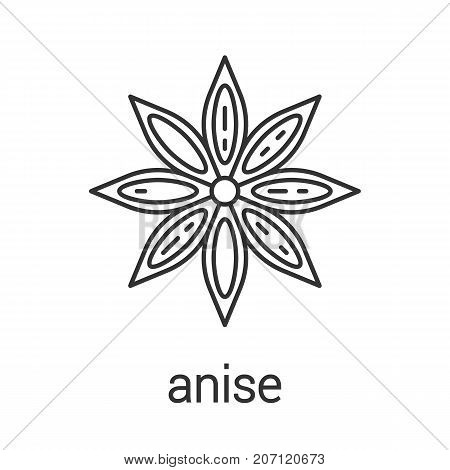 Anise linear icon. Thin line illustration. Flavoring, seasoning. Contour symbol. Vector isolated outline drawing