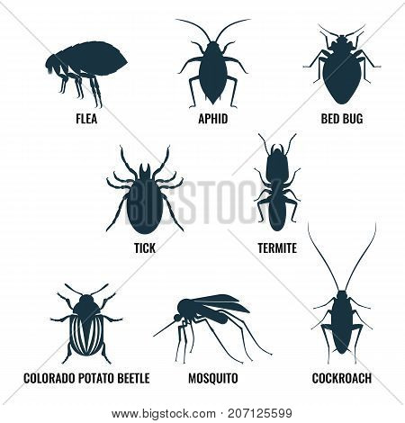 Set of insects icons. Ant and wasp, cockroach and mosquito, icons of harmful creatures, that may be found at house vector illustration isolated on white