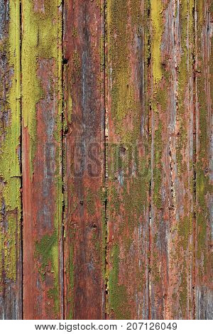 Detail of old and textured wooden door in an abandoned house