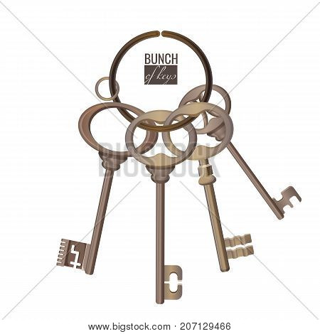 Bunch of keys metal chrome decorative unlock steel elements isolated on white background with text. Home access realistic objects vector illustrations set