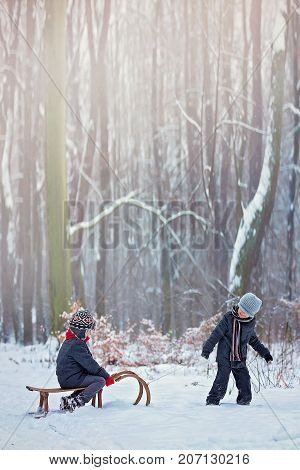 Happy Children In A Winter Park, Playing Together With A Sledge
