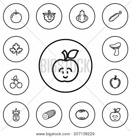 Set Of 12 Editable Kitchenware Outline Icons. Includes Symbols Such As Zucchini, Plum, Greens And More
