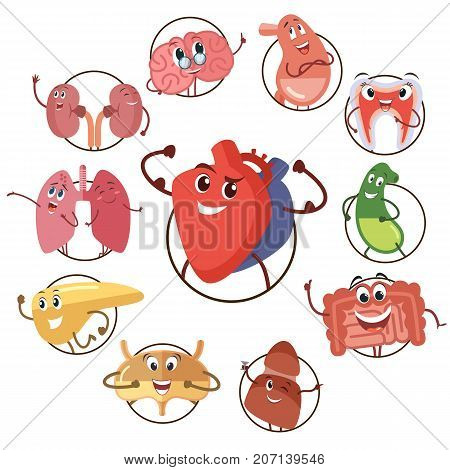 Funny medical icons of organs, heart, lungs, stomach. Set of round avatars cartoon characters of internal organs. Kidney and lung, brain and liver, bladder and heart. Vector illustrations
