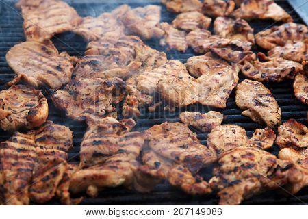 juicy pieces of grilled meat, detailed image