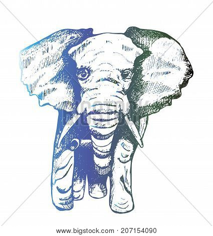 Illustration of an elephant computer hatching. Black elephant tattoos. Illustration of an elephant computer hatching. Black elephant tattoos. Gradient color
