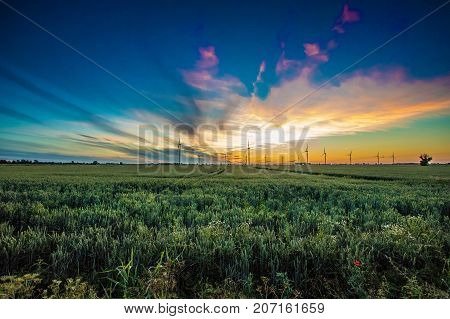 Wind farm against the background of the setting sun.