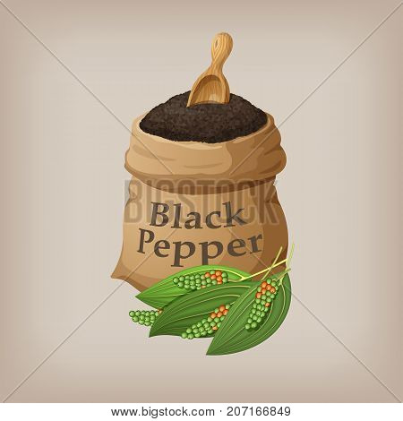 Black pepper in the bag. Vector illustration EPS10
