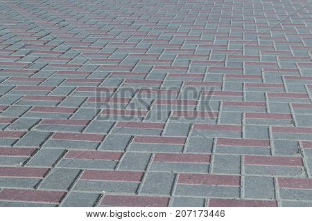 The square or on a sidewalk lined with brown and grey tiles paving stones. Pavers laid out in several rows with offset and tree. The paving surface is rough with small hollows.