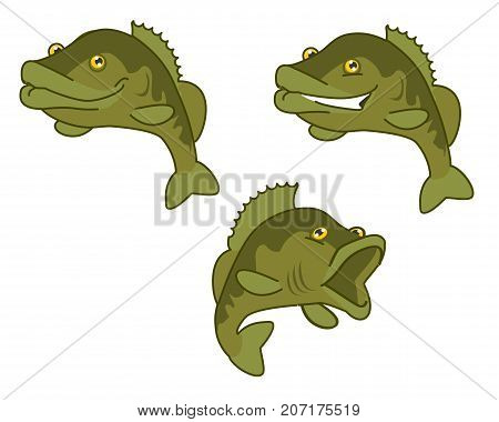largemouth bass. the fish print on white background. vector