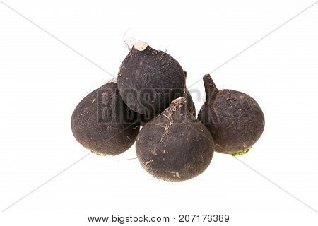 Group Of Five Black Radishes