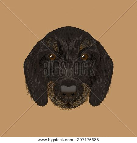 Cute black curly face of domestic puppy on brown background