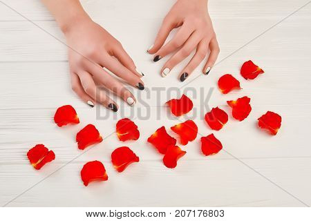 Stylish manicure and red rose petals. Female hands with matte manicure and flower petals on white wooden background. Nail beauty studio.