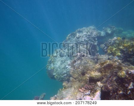 at great depth the sea blue abyss