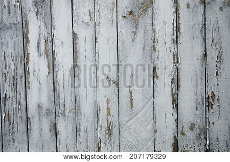 Background of vertically standing boards with old paint.