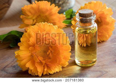 A Bottle Of Calendula Essential Oil With Calendula Flowers