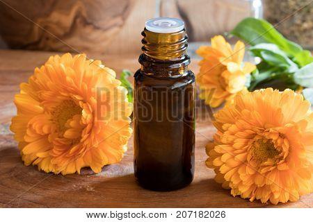 A Bottle Of Calendula Essential Oil With Fresh Calendula