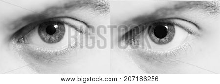 dilated pupil the effect of drugs on humans arcotic effect