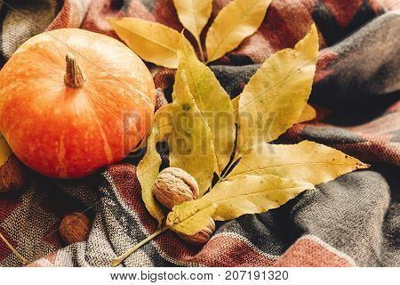 Autumn Pumpkin With Colorful Leaves  And Walnuts On Stylish Scarf Fabric, Space For Text. Happy Hall